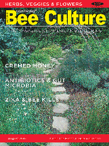 Aug 2017 Cover