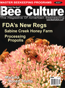 October 2016 Issue Cover