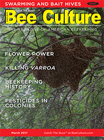 March 2017 Cover