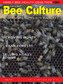 July 2017 Cover