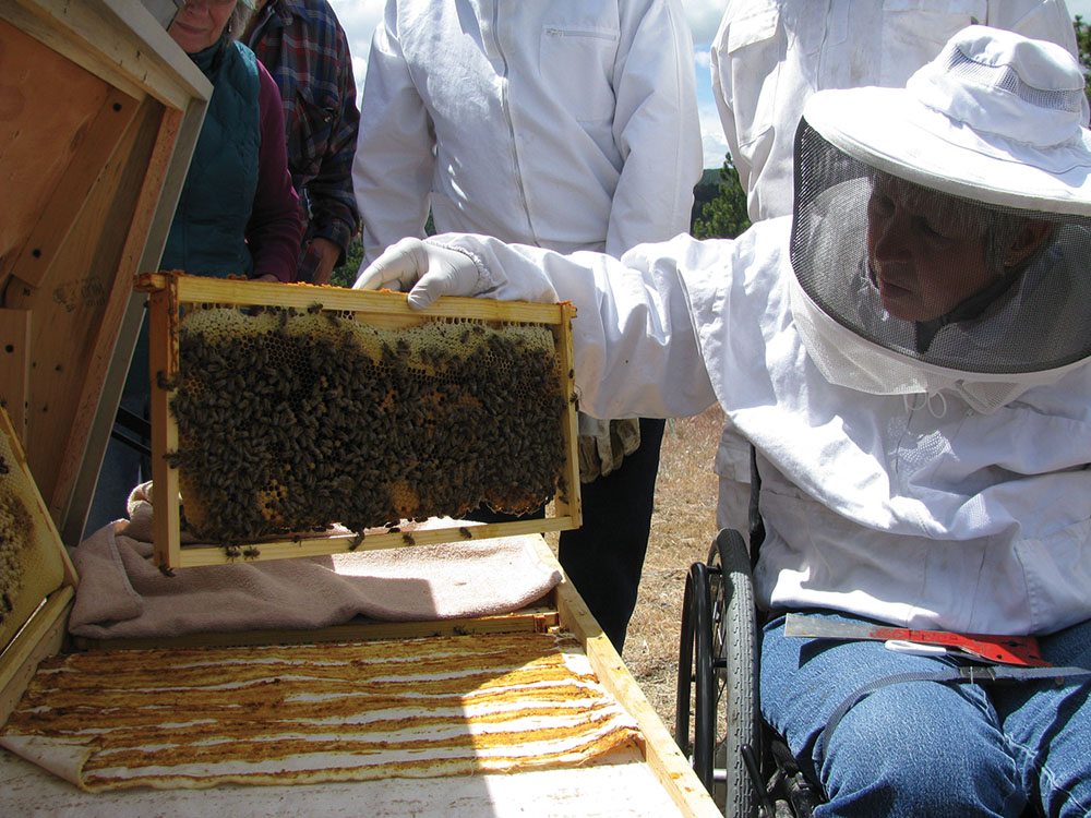 Naomi Price and her Vahalla hive.