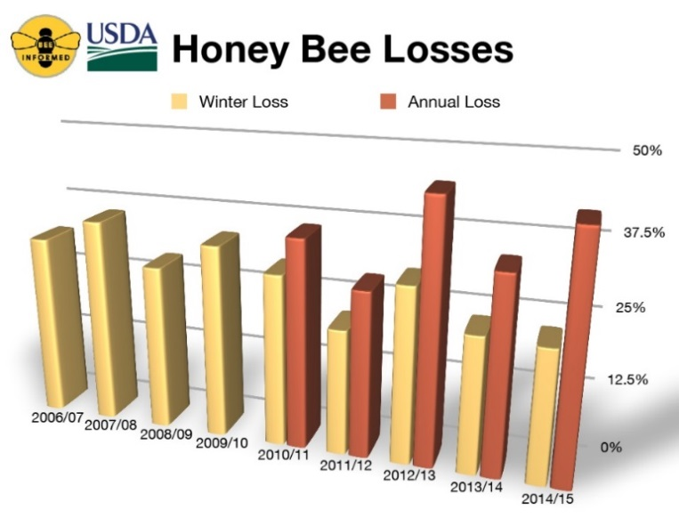 Bee Survey: Lower Winter Losses, Higher Summer Losses, Increased Total Annual Losses