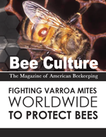 Thumbnail of Fighting Varroa Mites Worldwide to Protect Bees