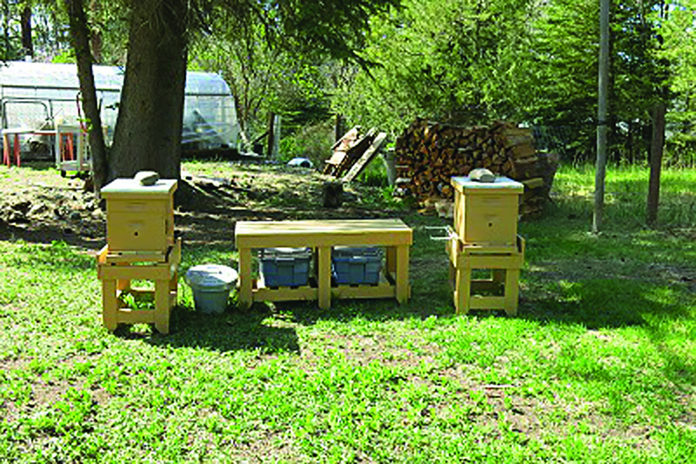 L.C.'s hive stands and convenient work table with storage.