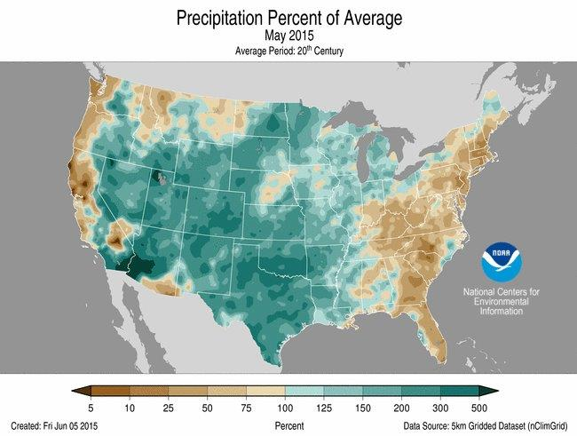 CATCH THE BUZZ – How Dry It Ain't This Spring, Mostly