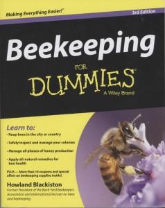 DummiesBook