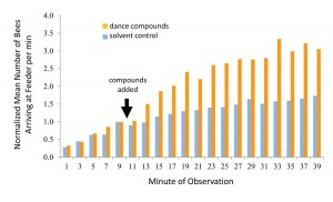 Figure 4. Results of experiment to determine whether dance compounds affect foraging behavior. Bee arrivals at the feeder dish were recorded for 10 minutes before the dance-compound mixture was injected, and for 30 minutes afterward. In half of the trials the pure solvent of the mixture was injected as a control. Each bar represents the mean number of arrivals from 15 trials, normalized among trials to account for daily fluctuations in foraging conditions. Redrawn from Gilley et al. 2012.