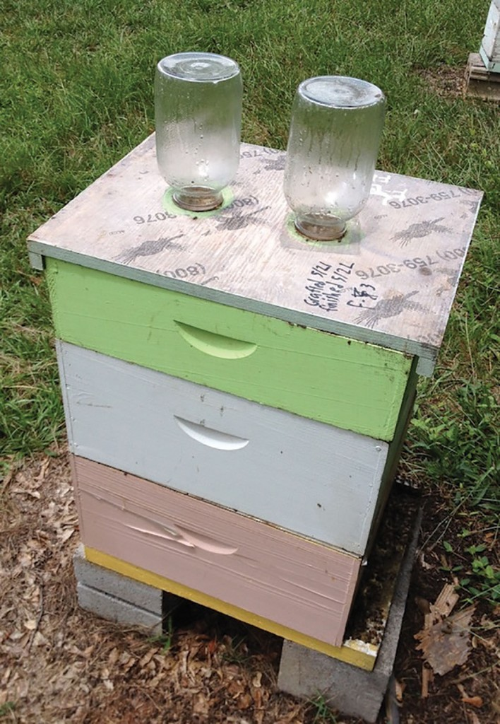 Feeding option we prefer. Two five-pound honey jars which equates to 1 gallon of feed being fed each time.