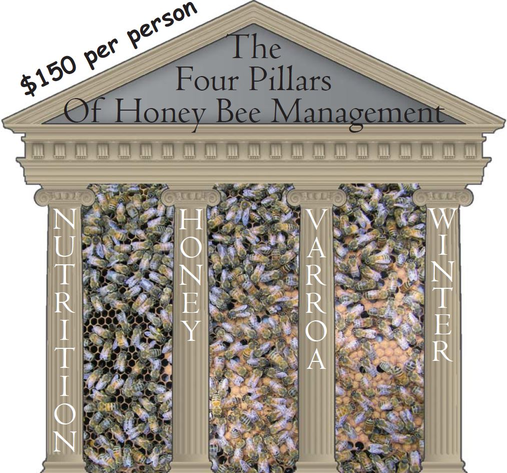 CATCH THE BUZZ – The Four Pillars of Honey Bee Management