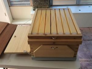 The rear (harvesting) side of a Flow honey super, harvest window closed, observation window open.