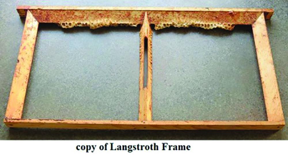 Frames Used In Beehives