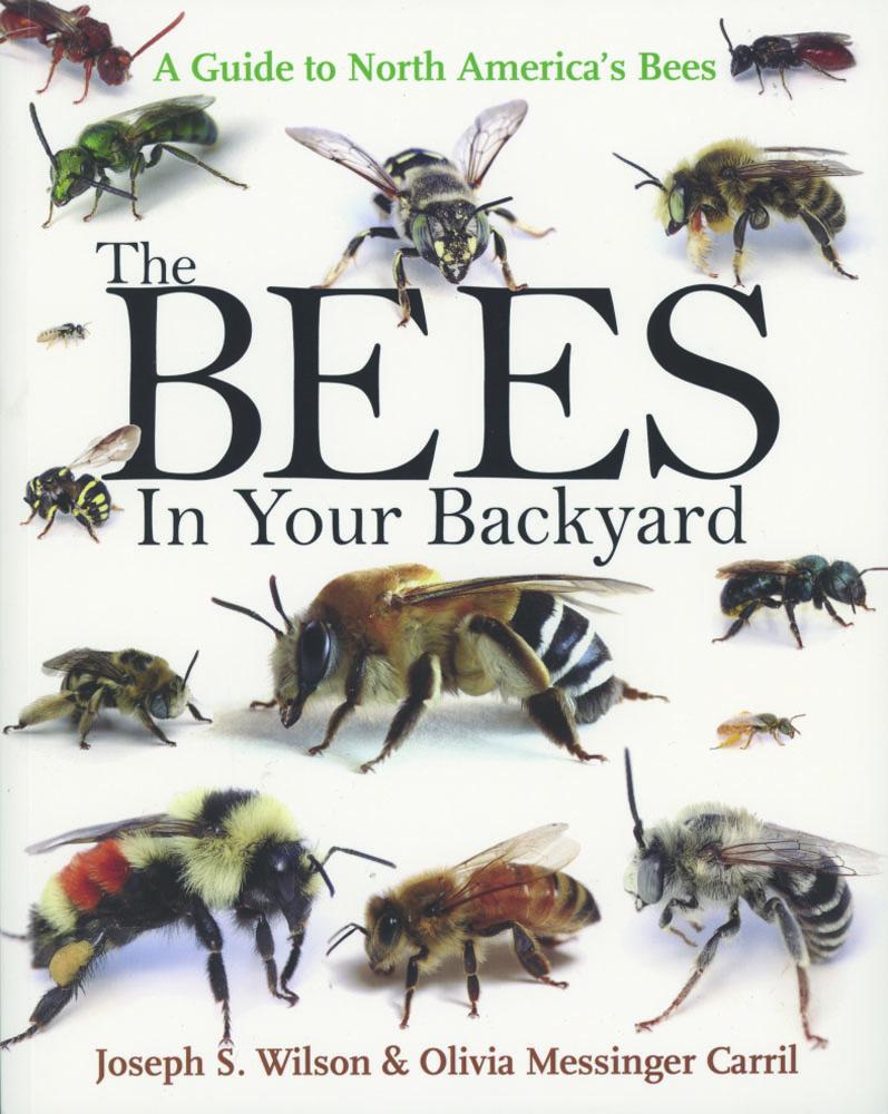 Backyardbook