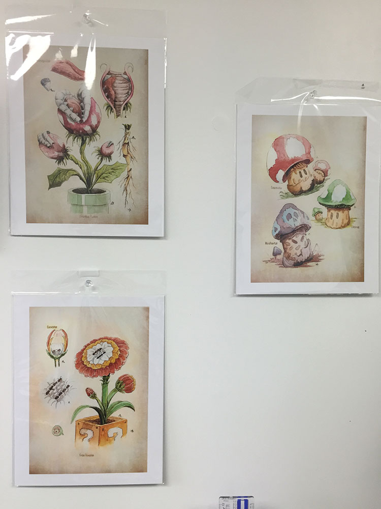Botanical drawings for the plant-inclined.