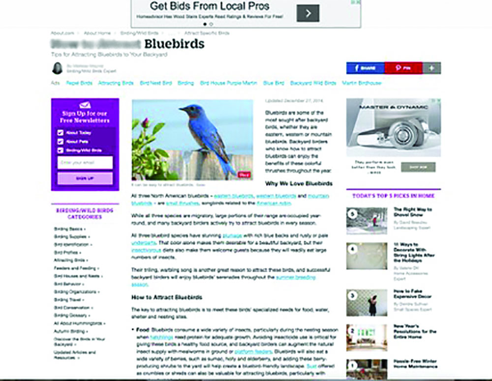 I couldn't use a bee page so I chose another of my interests – bluebirds. As you have seen, look at all the side and upper ads. I could not show the pop-up screen that came later. This is just a typical web page.