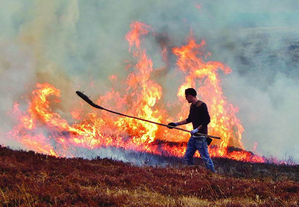 Moor burning. (photo by Peter McKinney)