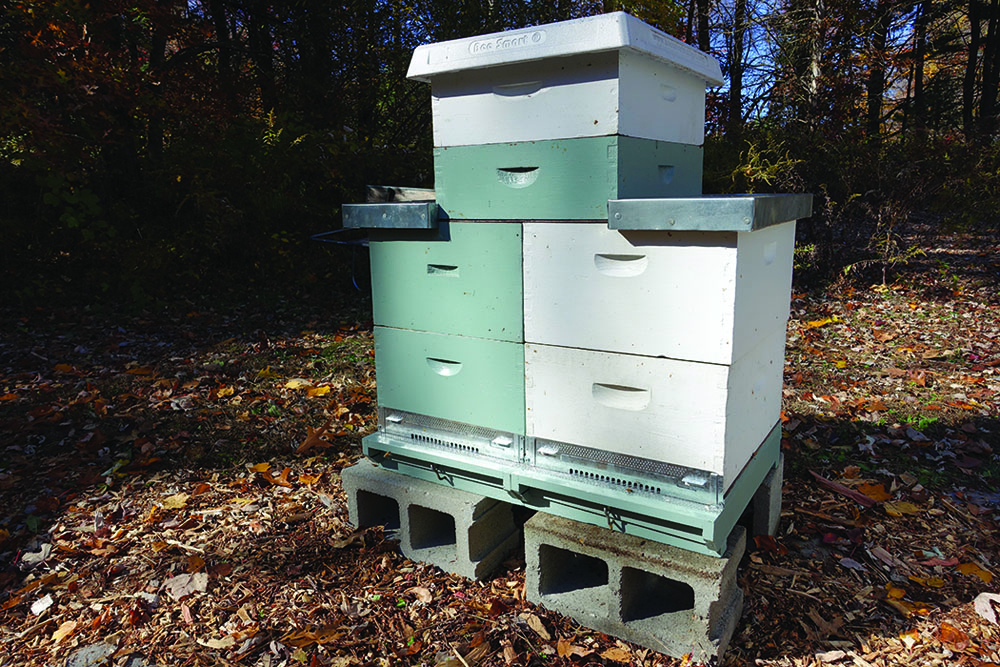 Figure 2. A complete horizontal configuration. You'll need two attached bottom boards, deep or medium brood boxes, two half size migratory or telescoping covers (shown), honey supers and a standard cover. Also needed is a set of full size migratory covers (not shown) and a flat queen excluder.