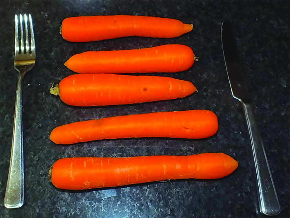 Oxalic Acid is a Natural Chemical. One pound of carrots, the amount shown, contains approximately 2.25g oxalic acid. This is enough to treat one hive.