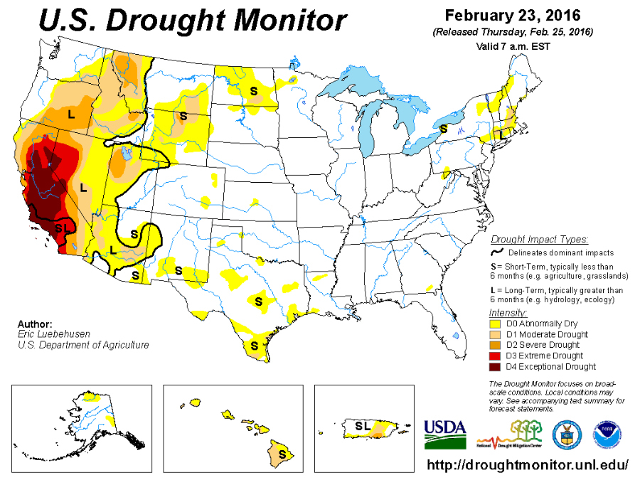 CATCH THE BUZZ – El Nino Didn't Fix California's Drought