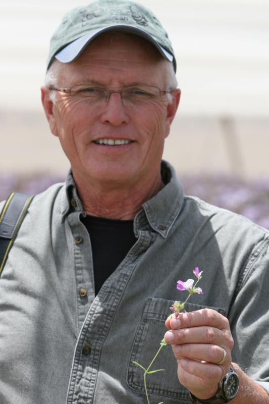 CATCH THE BUZZ – News From Gordy Wardell on Almond Pollination and Honey Bee Health