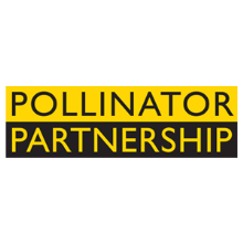CATCH THE BUZZ – Pollinator Partnership Research