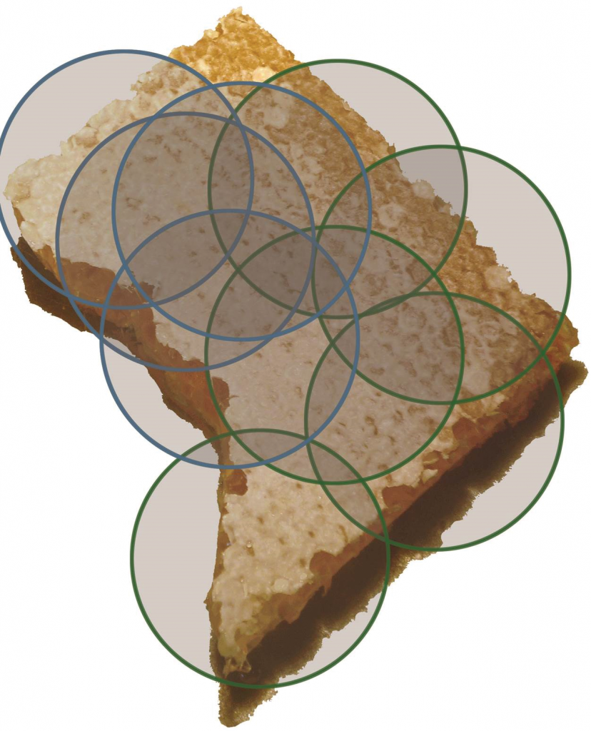 This is a map of DC cut out of honey comb. Superimposed on it are the flight areas of just the apiaries that Toni manages (green circle) and that she mentors (blue) downtown. Just in her own colonies, there is an effective route of transmission from one corner of DC to the other.