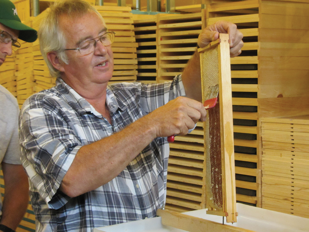 James Copenhaver demonstrating harvesting honey at Geezers Ridge Farm training center for the Vets who are planning on having lots of honey next year.