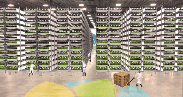 CATCH THE BUZZ – This Could be Part of The Future of Farming.