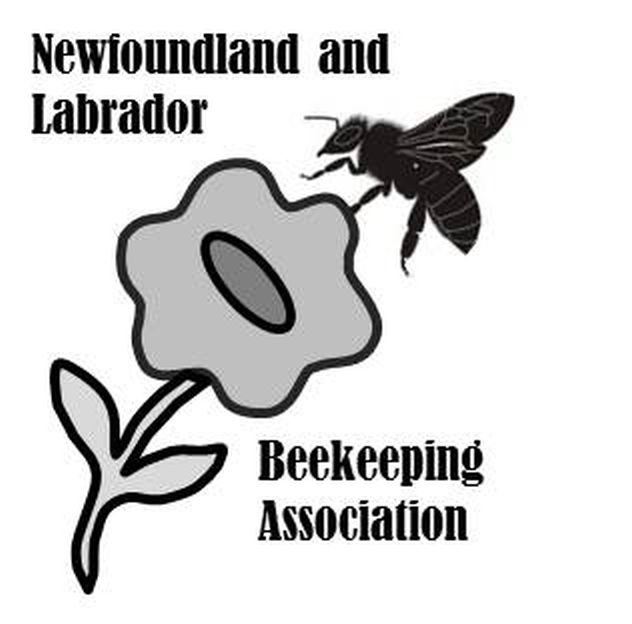 CATCH THE BUZZ – Are OZ Bees Good For Canada? Some Think Not.