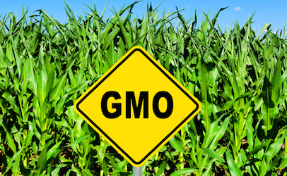 CATCH THE BUZZ – Congress OKs Bill Requiring First GMO Food Labels, BUT HONEY'S NOT a GMO FOOD!