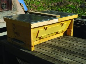 The Spikenard Top Bar Hive is billed as the first commercial top bar hive to include a Varroa screen and accommodate 10-frame standard supers. A portion of the proceeds from all sales go to supportingGunther Hauk's honey bee sanctuary at Spikenard Farm in Virginia.