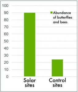 Bar chart An 11-site observational study found that solar sites with pollinator habitat have a statistically significant increase in abundance of bees and butterflies (The Effects of Solar Farms on Local Biodiversity, Montag et. al., 2016).