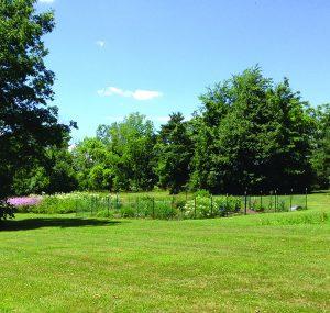 The phenology garden.