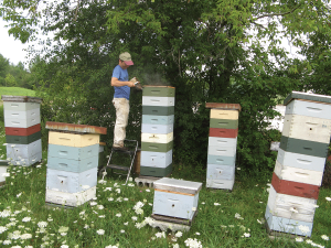 Hives that survive the Winter and are healthy and strong when the first nectar flow of the season starts is a key to success in beekeeping.""