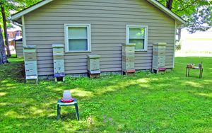 Robert O. has his hives' color scheme coordinated with his home color scheme. Nicely done.