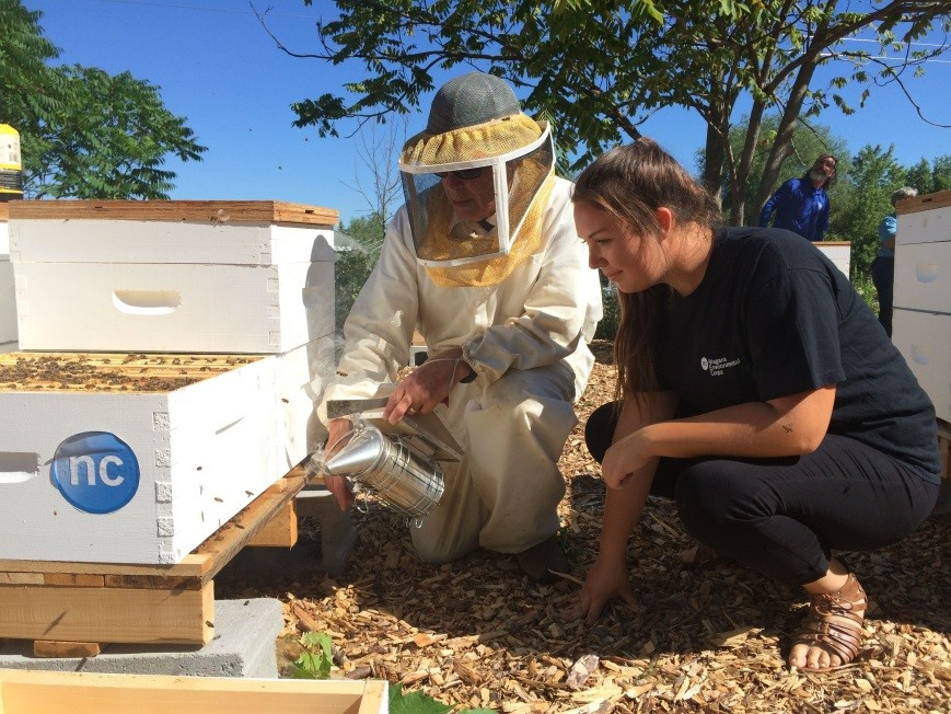 Environmental technician student Christine Combe checks out beehives at Niagara College's new apiary with Dennis Edell of the Ontario Beekeepers' Association. (Niagara College photo)