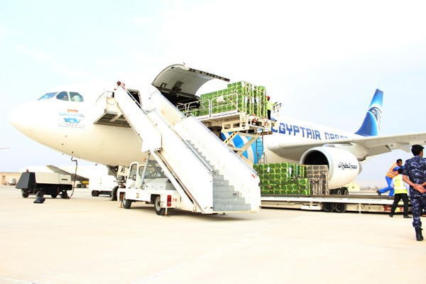 CATCH THE BUZZ – Egyptair Cargo flight delivers 60 million bees to RAK Airport
