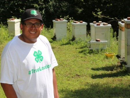 CATCH THE BUZZ – The key ingredient of 4-H is the combination of hands-on learning activities with the oversight of caring adult mentor volunteers