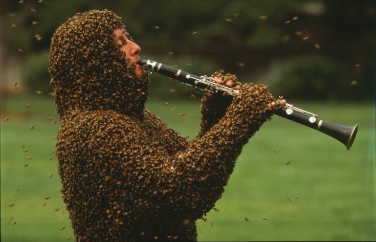 CATCH THE BUZZ – Norm Gary still plays his tunes, talks to the bees, and entertains us all. Check this out.