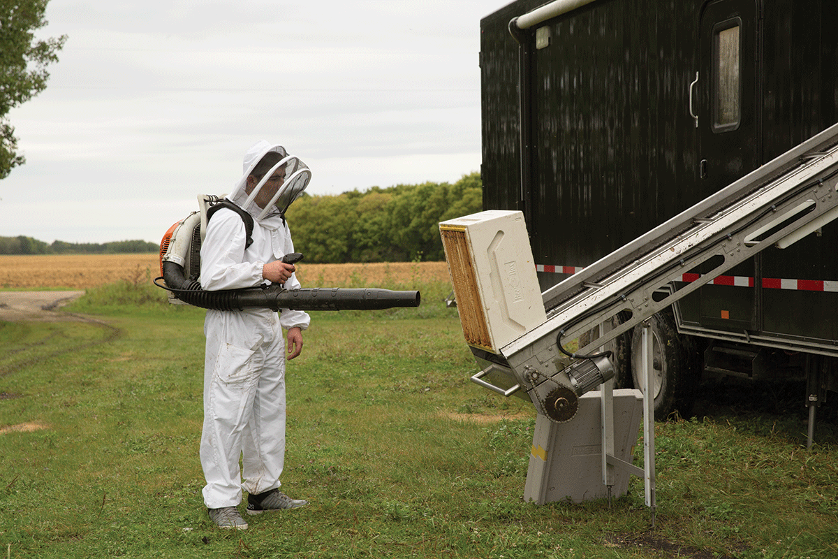 The Trailer Bee Culture
