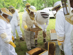 Harry Fulton, center with frame, teaching beekeepers.