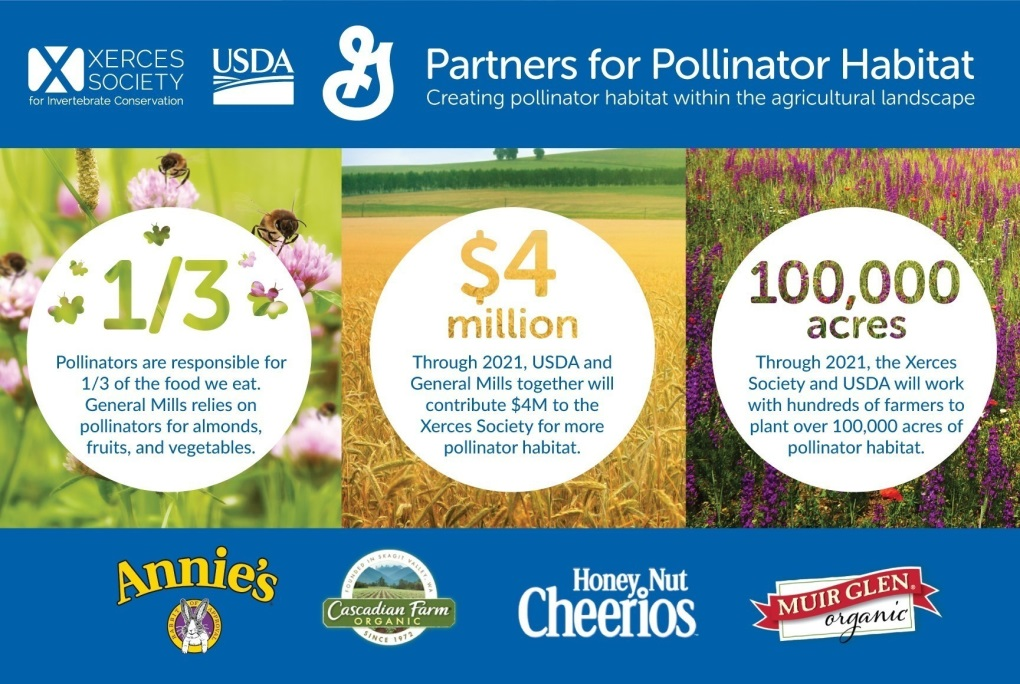 CATCH THE BUZZ – General Mills, NRCS and the Xerces Society Announce Multi-Year, $4 Million Investment in Pollinator Habitat