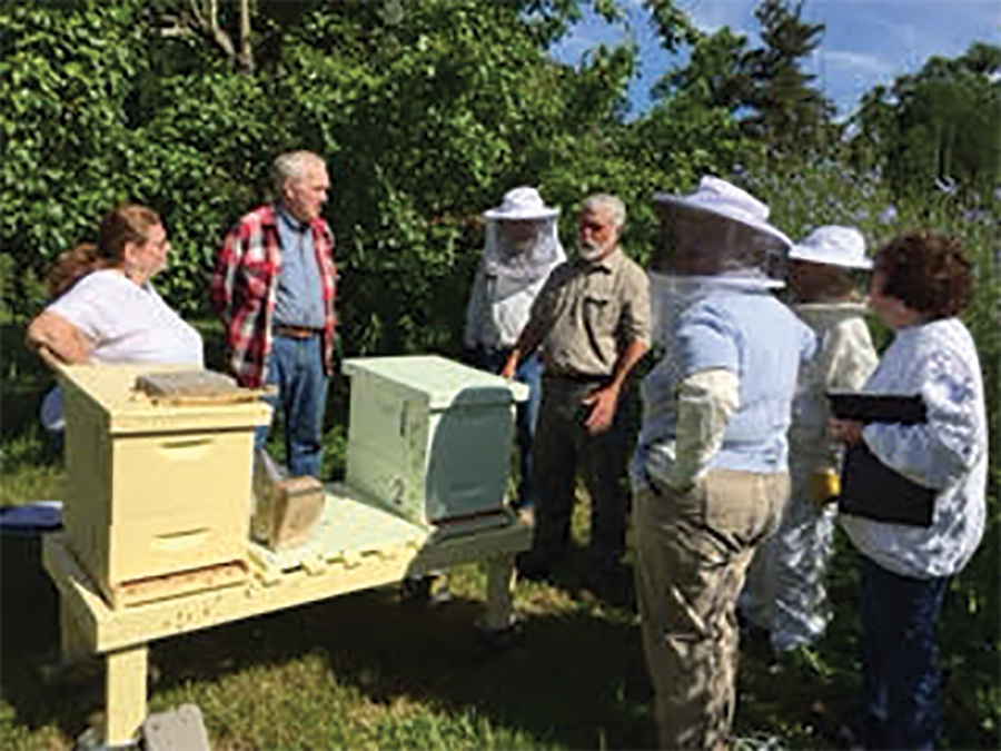 The Trails and Tribulations of a New Delaware Bee Club By