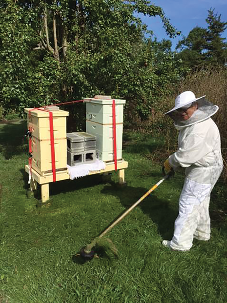 The Trails and Tribulations of a New Delaware Bee Club | Bee