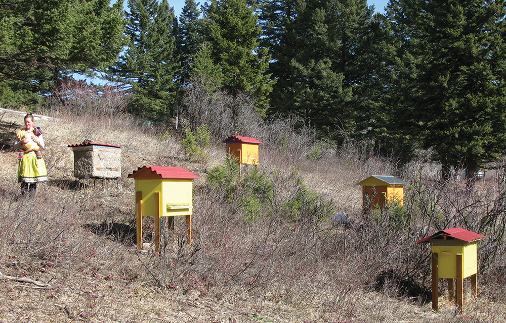 Superb The Layens Hive Bee Culture Wiring Cloud Hisonuggs Outletorg