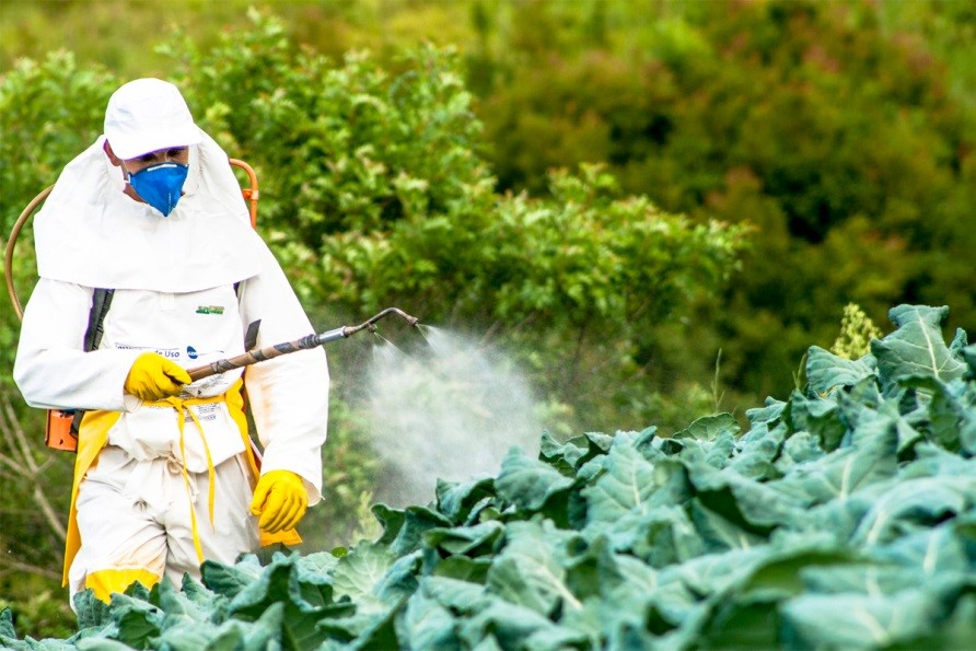 "CATCH THE BUZZ – FROM CIVIL EATS: UN REPORT SAYS ""Reliance on hazardous pesticides is a short-term solution that undermines the right to adequate food and health for present and future generations."""
