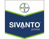 CATCH THE BUZZ – New Sivanto Insecticide Safe For Bees, Hard On Pests, Good For Crops.