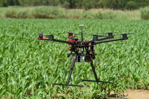 CATCH THE BUZZ – Knowing the Rules for Drones in Agriculture