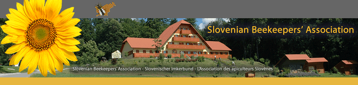 CATCH THE BUZZ – Slovenia To Get State And Tuition Funded Beekeeping Academy.