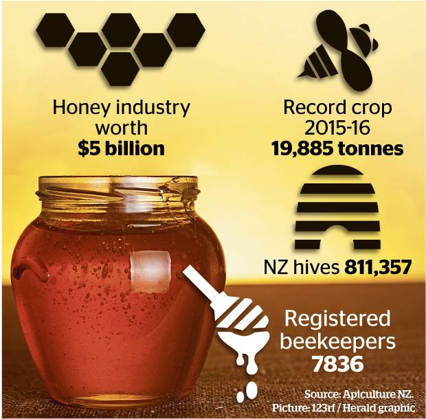 CATCH THE BUZZ – Good Honey Crop Expected in New Zealand after Dismal 2017.