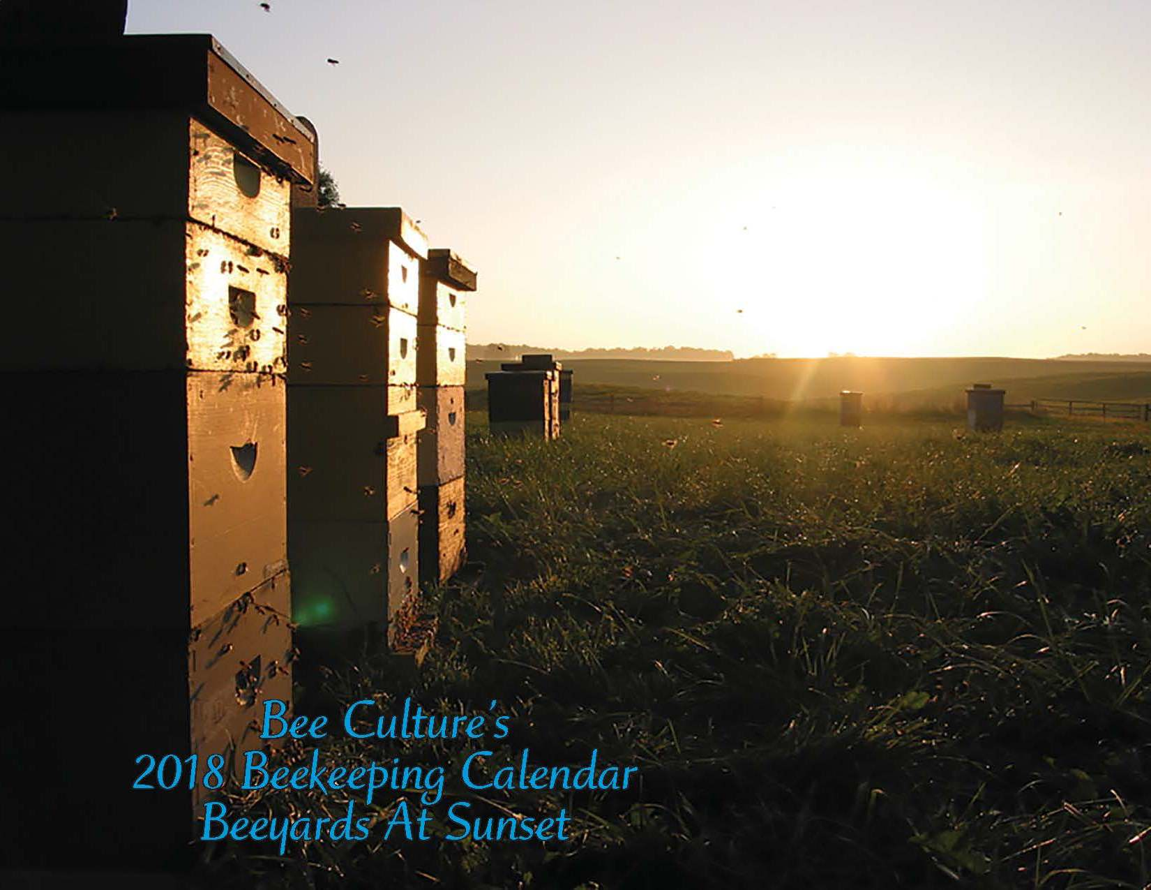 CATCH THE BUZZ – All the Calendars Are Gone!!